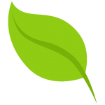 NEF leaf favicon
